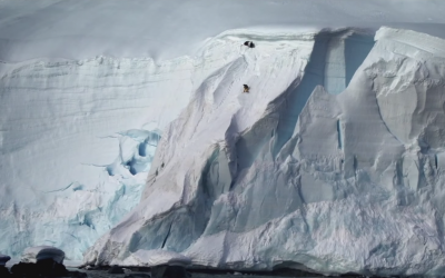 MISSION ANTARCTIC – Wins 2014 'Why Not Adventure Film Festival'